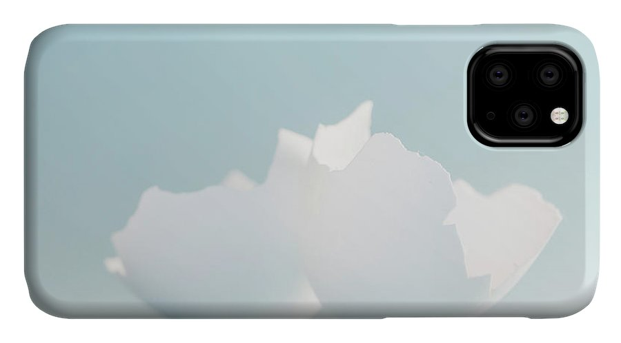 Chicken Egg IPhone 11 Case featuring the photograph Cracked Egg Shells On Soft Blue by Iris Richardson