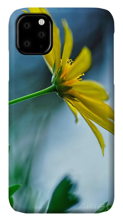Photography IPhone Case featuring the photograph Daisy In The Breeze by Kaye Menner