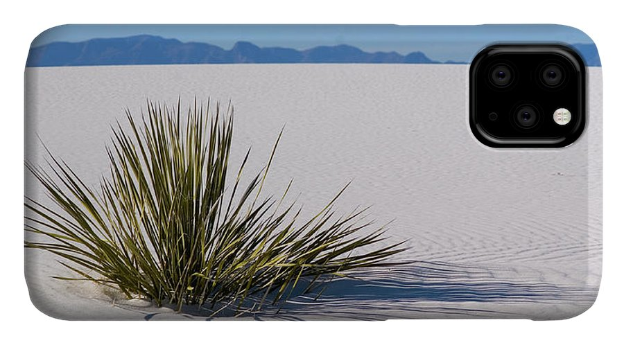 White Sands IPhone Case featuring the photograph Dune Plant by Marie Leslie