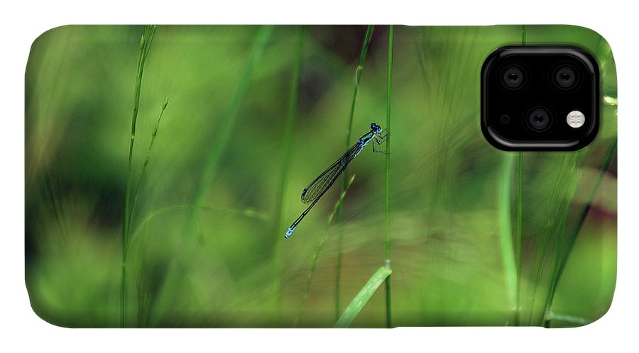 Damselfly IPhone Case featuring the photograph Eastern Forktail by Bill Morgenstern