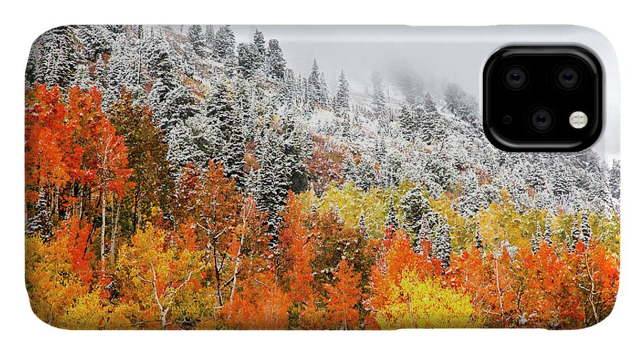 Fall To Winter IPhone 11 Case featuring the photograph Fall To Winter Canvas Print, Photographic Print, Art Print, Framed Print, Greeting Card, Iphone Case by David Millenheft