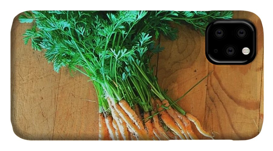 Carrots IPhone 11 Case featuring the photograph Fresh Carrots by Nancy Ingersoll