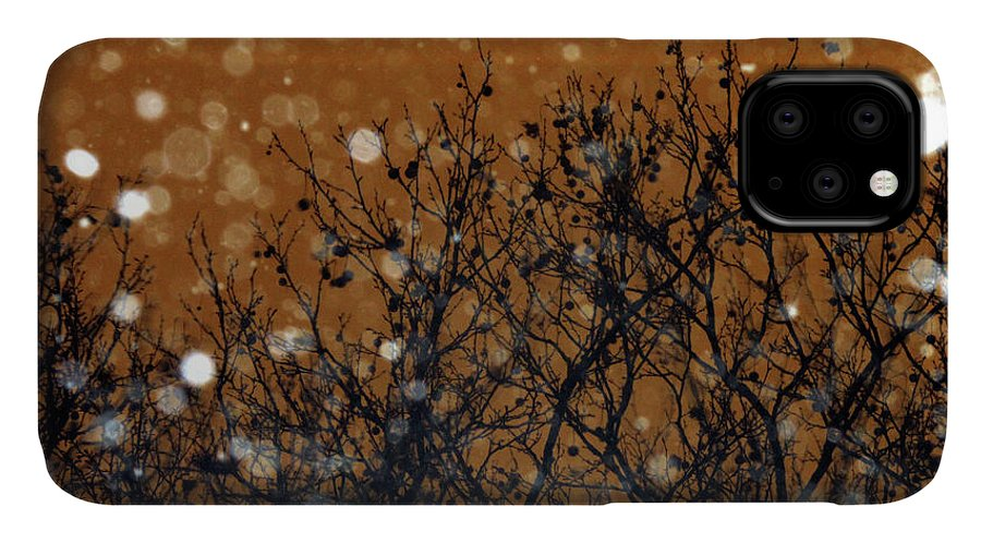 Snowflakes IPhone Case featuring the photograph Flakes In The Dark by Onedayoneimage Photography
