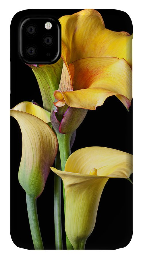 Calla Lily IPhone Case featuring the photograph Four Calla Lilies by Garry Gay
