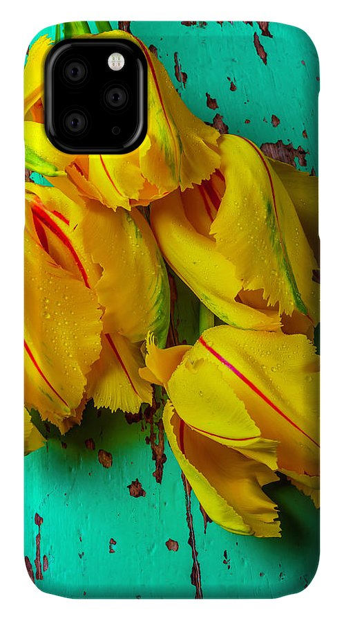 Photo IPhone Case featuring the photograph French Tulips On Green Table by Garry Gay