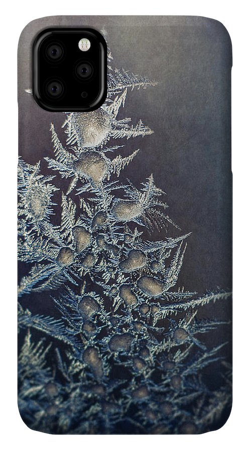 Frozen IPhone 11 Case featuring the photograph Frost by Scott Norris