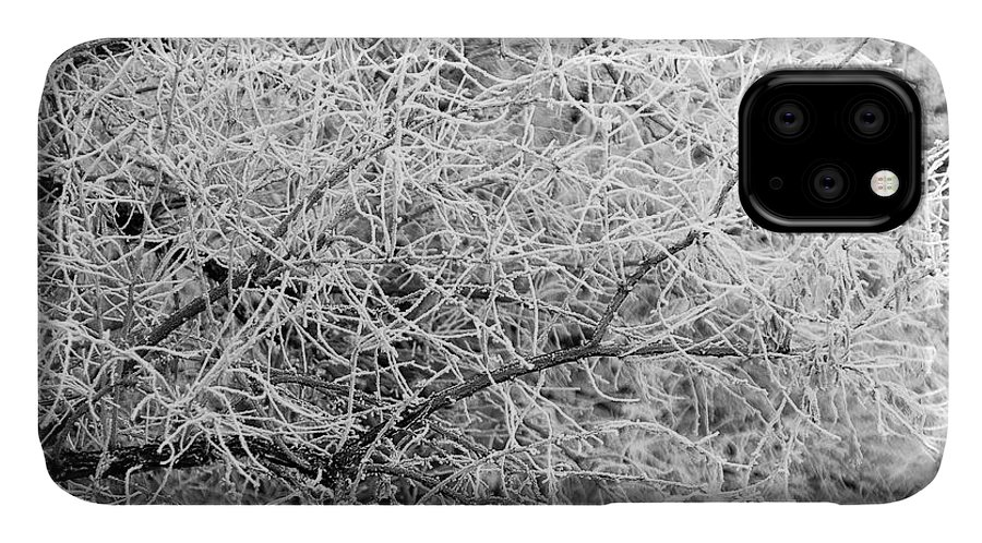 Cold IPhone Case featuring the photograph Frosty Branches by Bob Mintie