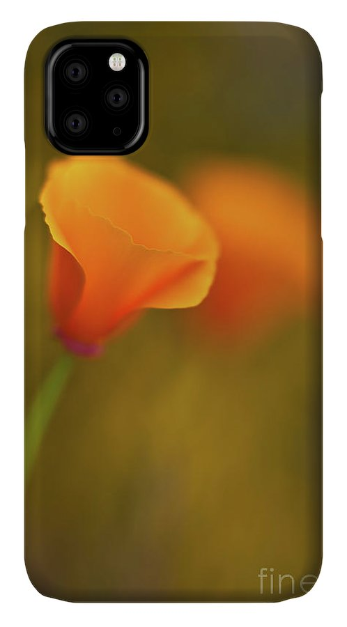 Golden IPhone 11 Case featuring the photograph Golden Edges by Mike Reid