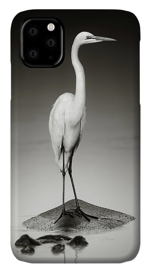 Egret IPhone 11 Case featuring the photograph Great White Egret On Hippo by Johan Swanepoel