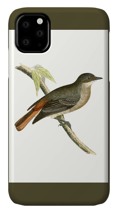 Bird IPhone Case featuring the painting Grey Redstart by English School