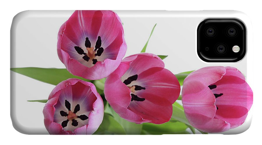 Tulips IPhone Case featuring the photograph Happy Pink by Marie Leslie