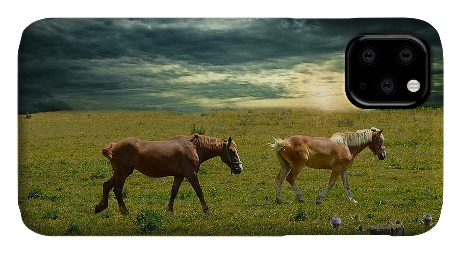 Horses IPhone Case featuring the photograph Horses Going To Rest by Michelle Williams