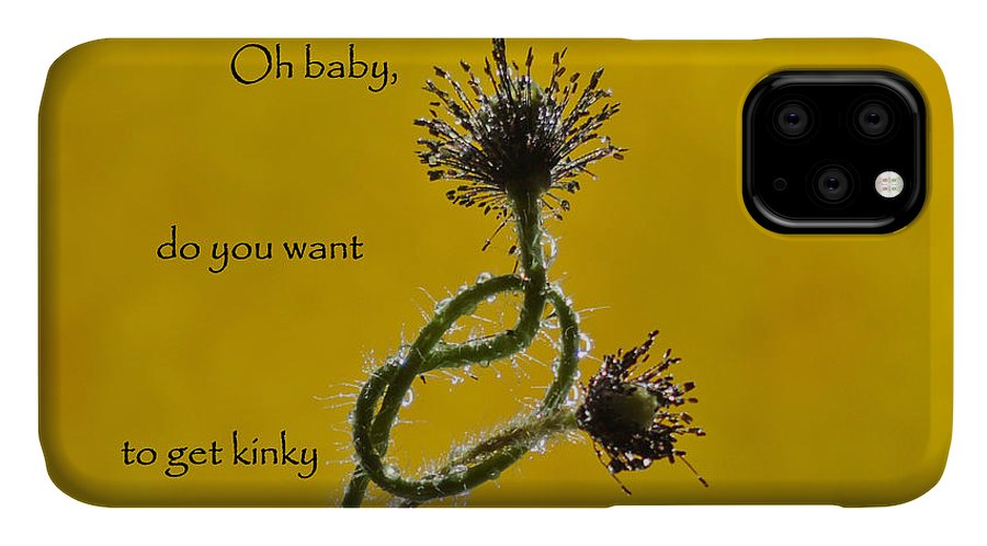 Sparkling IPhone Case featuring the photograph Kinky Baby by Barbara St Jean