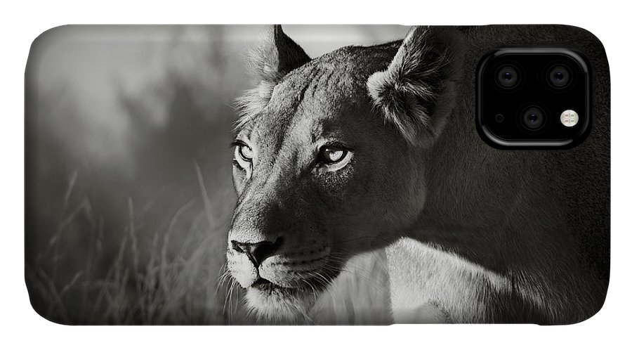 Lioness IPhone Case featuring the photograph Lioness stalking by Johan Swanepoel