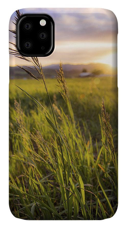 Meadow Light IPhone Case featuring the photograph Meadow Light by Chad Dutson
