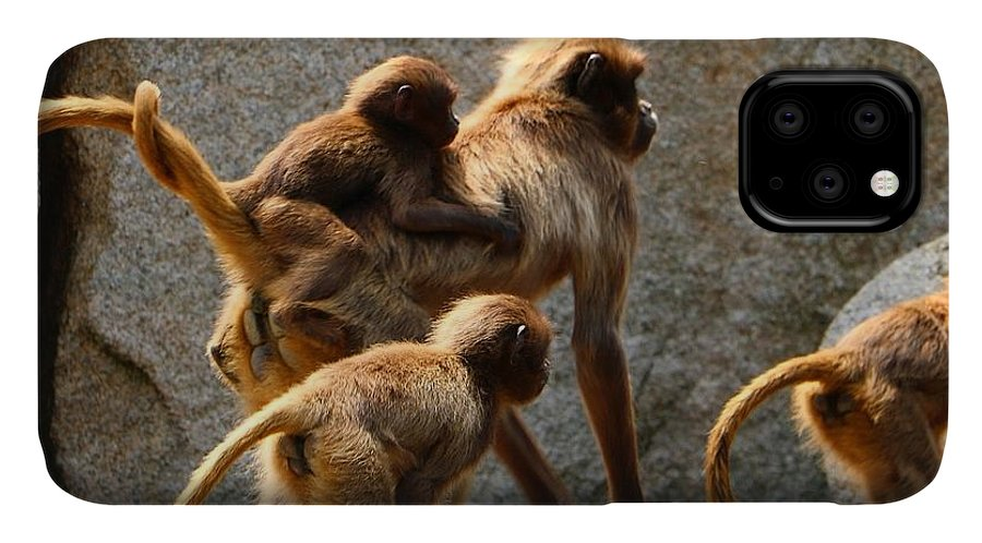 Animal IPhone Case featuring the photograph Monkey Family by Dennis Maier