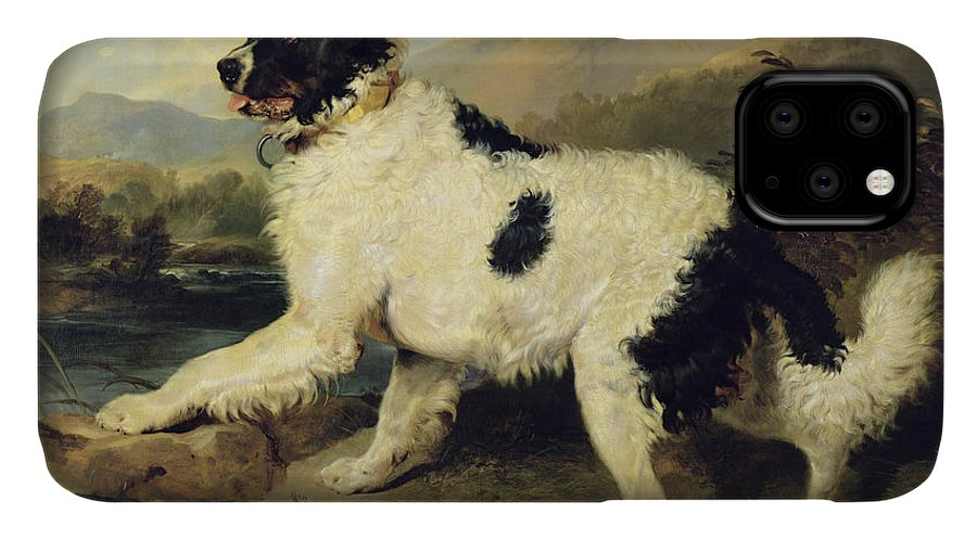 Newfoundland IPhone Case featuring the painting Newfoundland Dog Called Lion by Sir Edwin Landseer