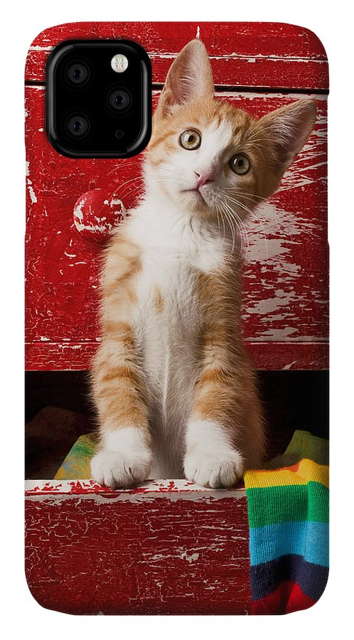 Kitten IPhone Case featuring the photograph Orange tabby kitten in red drawer by Garry Gay