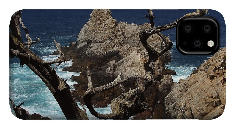 Carmel IPhone Case featuring the photograph Point Lobos Rocks and Branches by Charlene Mitchell