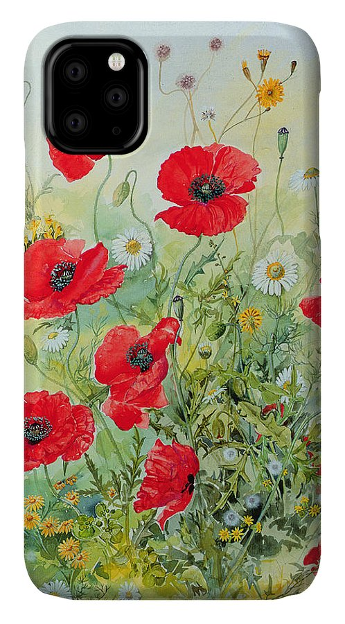 Flowers; Botanical; Flower; Poppies; Mayweed; Leaf; Leafs; Leafy; Flower; Red Flower; White Flower; Yellow Flower; Poppie; Mayweeds IPhone Case featuring the painting Poppies and Mayweed by John Gubbins