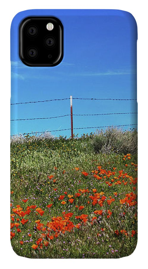 Poppies IPhone 11 Case featuring the mixed media Poppy Hill- Art By Linda Woods by Linda Woods