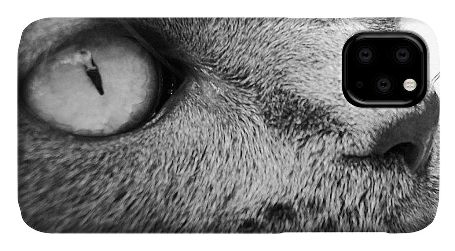 IPhone Case featuring the photograph Pout by Cameron Bentley
