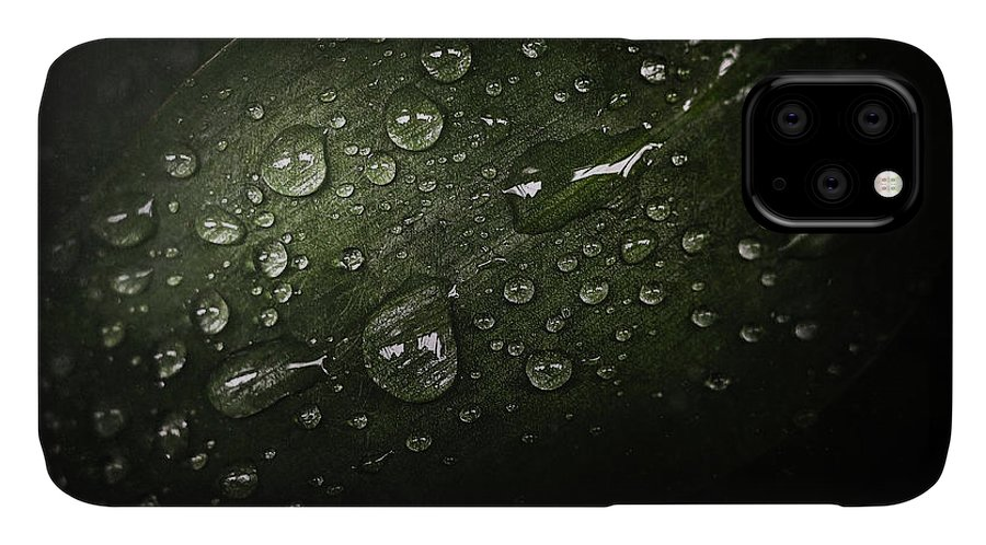 Macro IPhone Case featuring the photograph Rain Drops On Leaf by Scott Norris