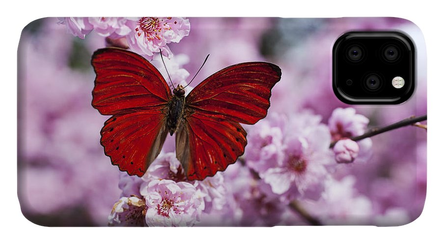 Red IPhone Case featuring the photograph Red butterfly on plum blossom branch by Garry Gay