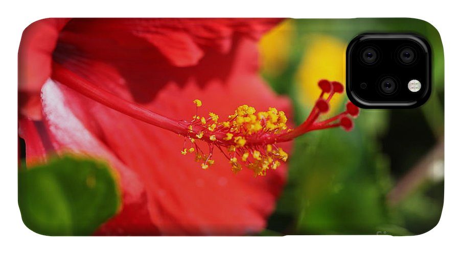 Flowers IPhone Case featuring the photograph Red Hibiscus and Green by Nadine Rippelmeyer