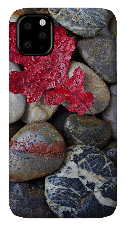 Red Leaf IPhone 11 Case featuring the photograph Red Leaf Wet Stones by Garry Gay