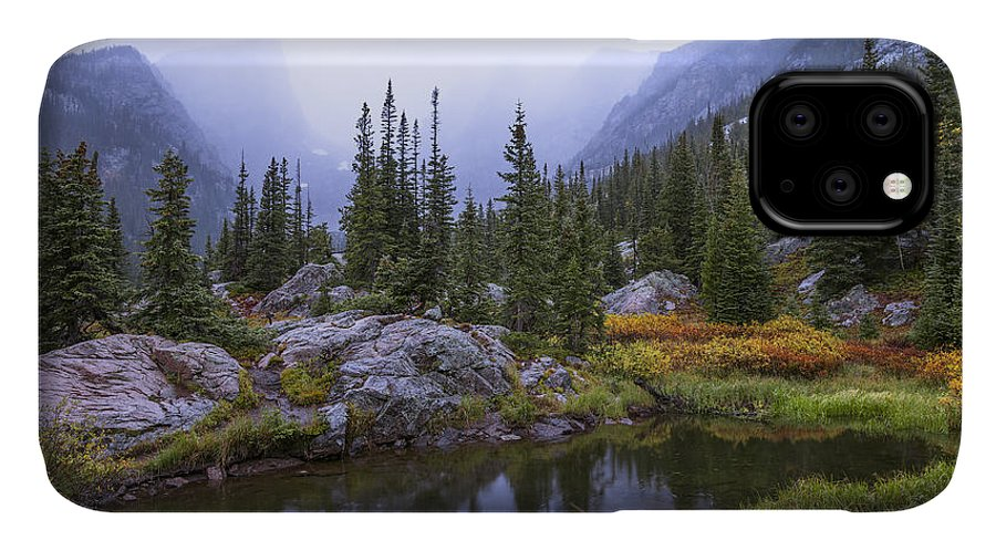 Saturated Forest IPhone Case featuring the photograph Saturated Forest by Chad Dutson