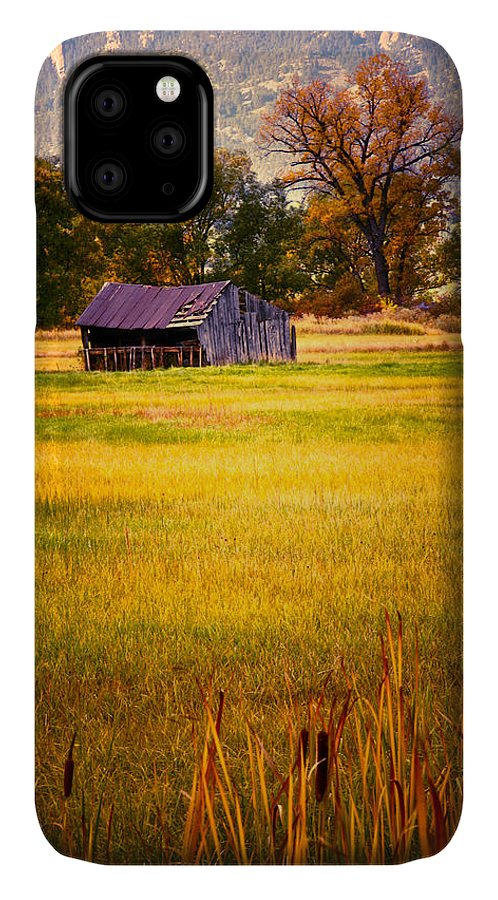 Shed IPhone Case featuring the photograph Shed In Sunlight by Marilyn Hunt