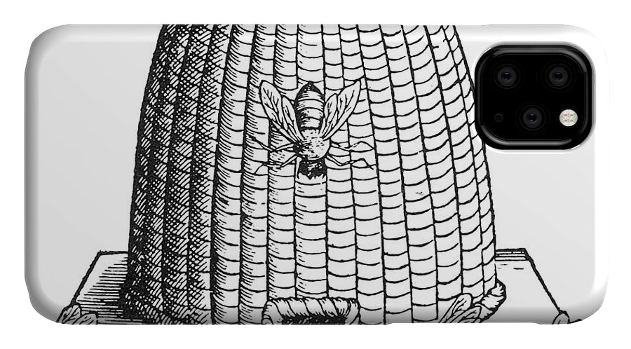 Agriculture IPhone Case featuring the photograph Skep Beehive, 17th Century by Science Source