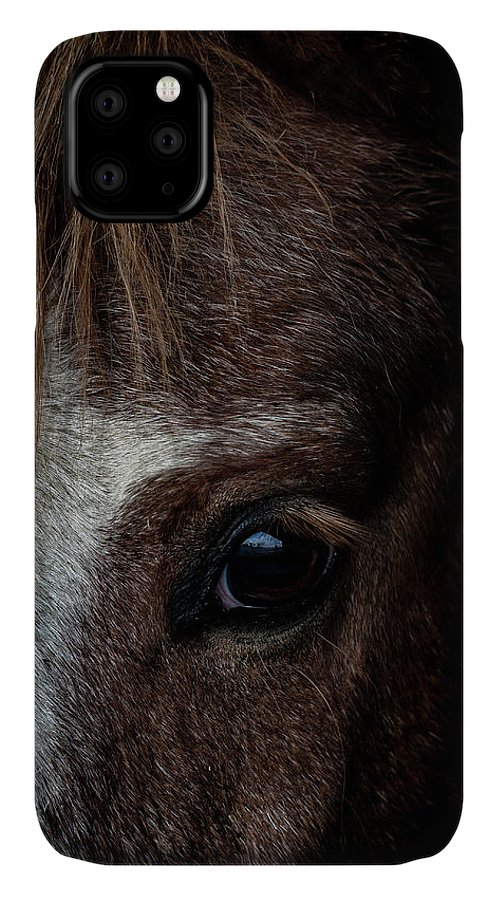 Pony IPhone 11 Case featuring the photograph Spirit by Paul Neville