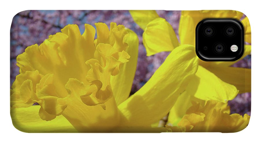 Flowers IPhone Case featuring the photograph Spring Art Prints Yellow Daffodils Flowers Pink Blossoms Baslee Troutman by Baslee Troutman