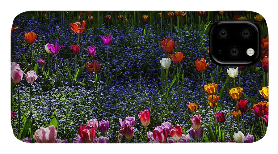 Yellow IPhone Case featuring the photograph Spring Garden With Tulips by Garry Gay