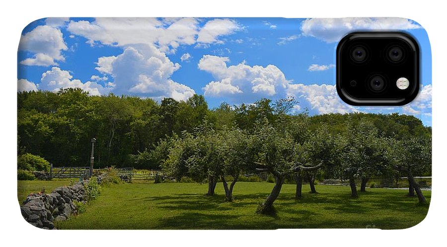 Farm IPhone Case featuring the photograph Summer At The Farm by Tammie Miller
