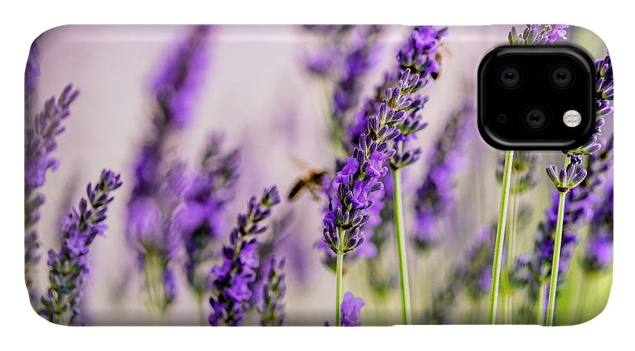 Lavender IPhone Case featuring the photograph Summer Lavender by Nailia Schwarz