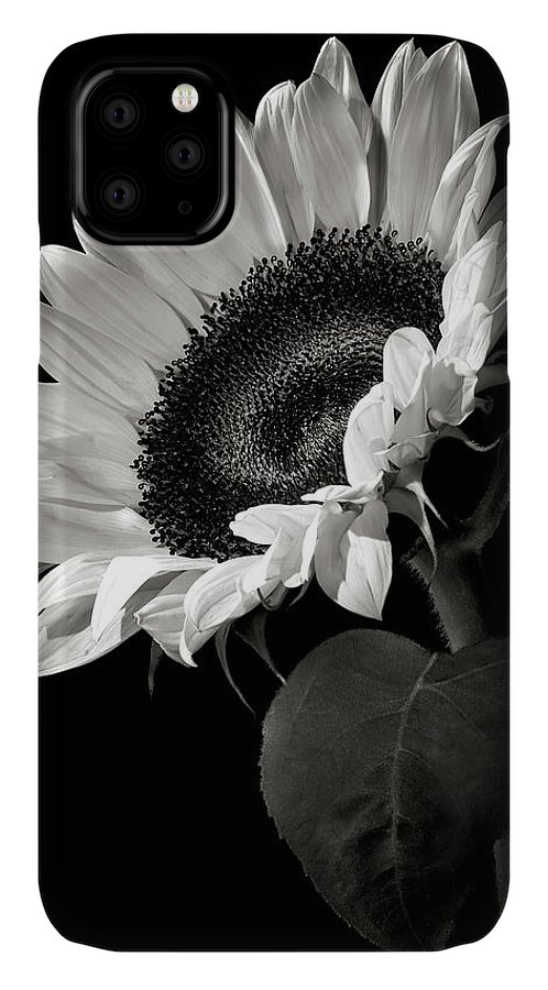 Flower IPhone Case featuring the photograph Sunflower In Black And White by Endre Balogh