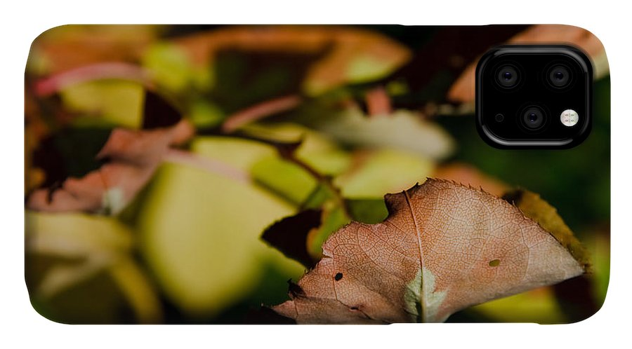 Fall IPhone Case featuring the photograph The End Of Fall by Bob Mintie