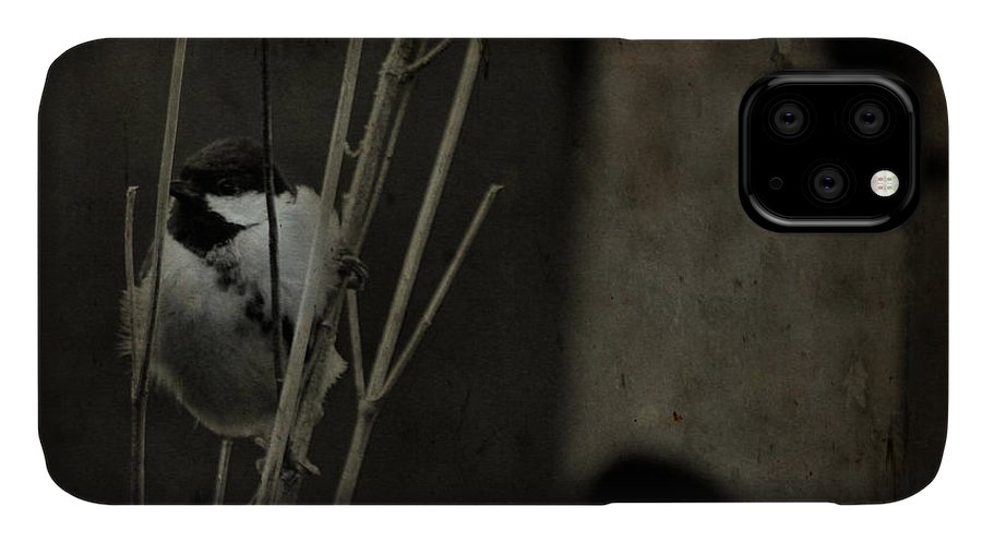 Tit IPhone Case featuring the photograph The Great Tit by Angel Ciesniarska