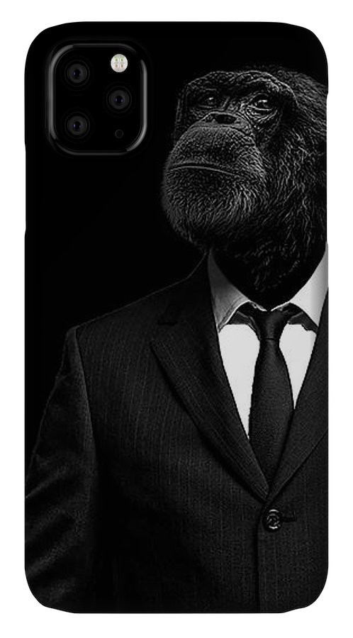 Chimpanzee IPhone Case featuring the photograph The interview by Paul Neville