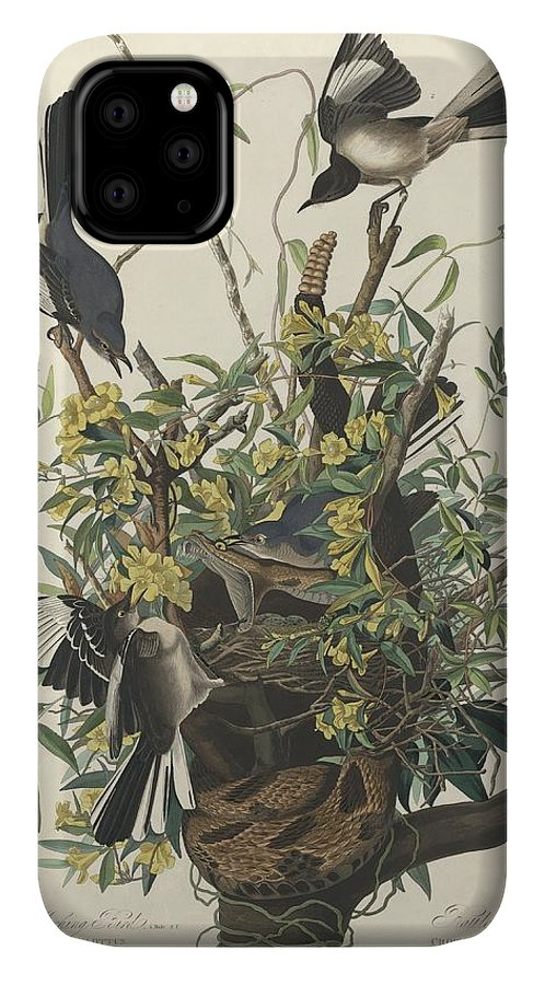 Audubon IPhone Case featuring the drawing The Mockingbird by Dreyer Wildlife Print Collections