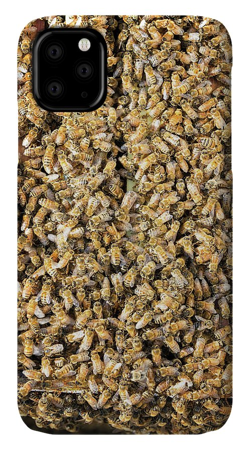 Bee IPhone Case featuring the photograph Thousands of Bees by Jess Kraft