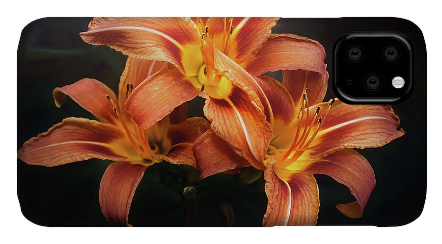 Lily IPhone Case featuring the photograph Three Lilies by Scott Norris