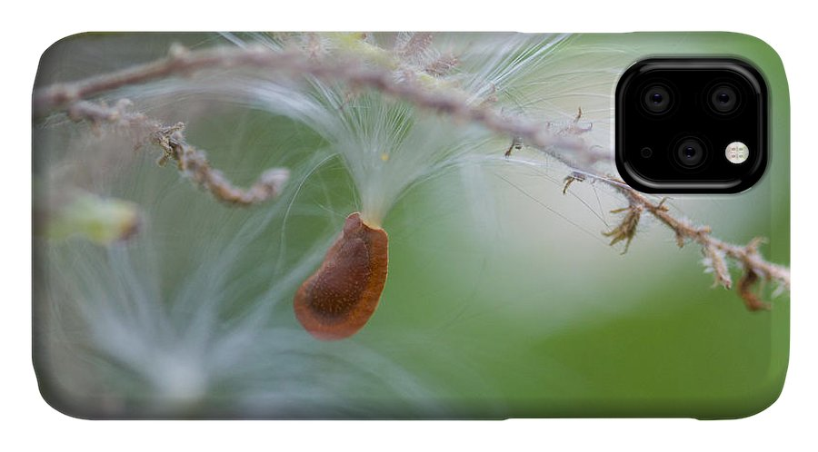 Milkweed IPhone Case featuring the photograph Tiny Seed by Dart and Suze Humeston