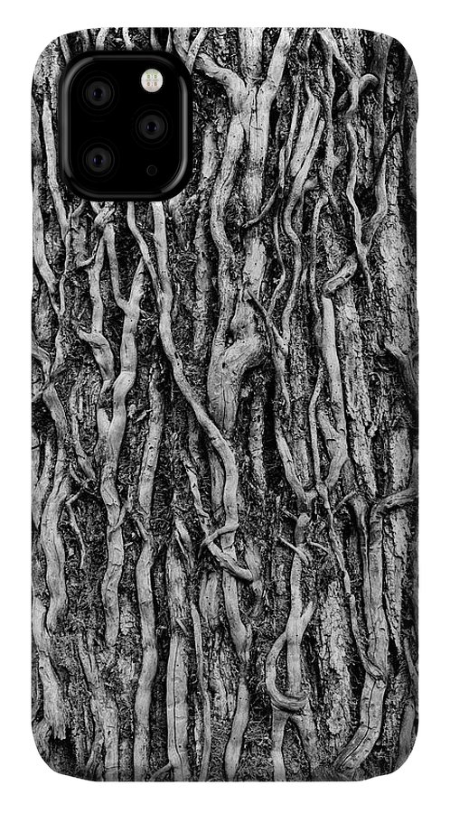 Abstract IPhone Case featuring the photograph Tree Bark Abstract by Tom Mc Nemar