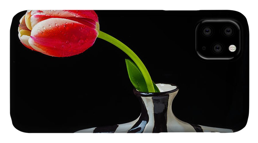 Leaf IPhone Case featuring the photograph Tulip In Striped Vase by Garry Gay