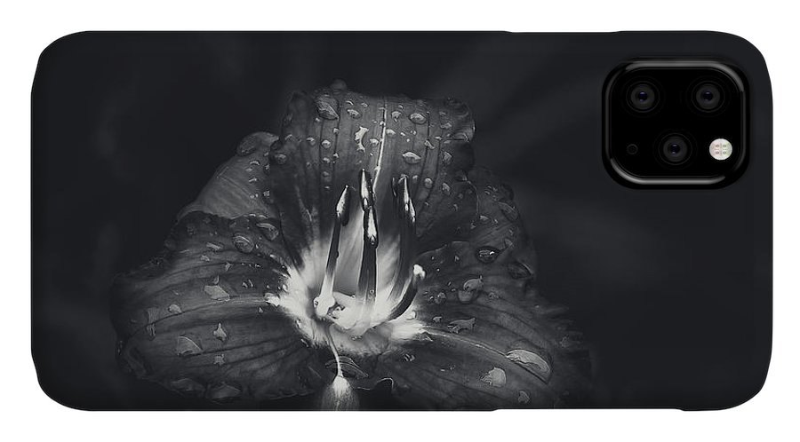 Lily IPhone Case featuring the photograph Untitled Lily by Scott Norris