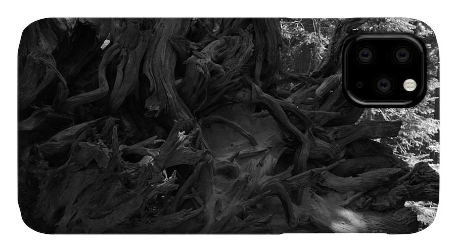 Roots IPhone Case featuring the photograph Uprooted by Leah McPhail